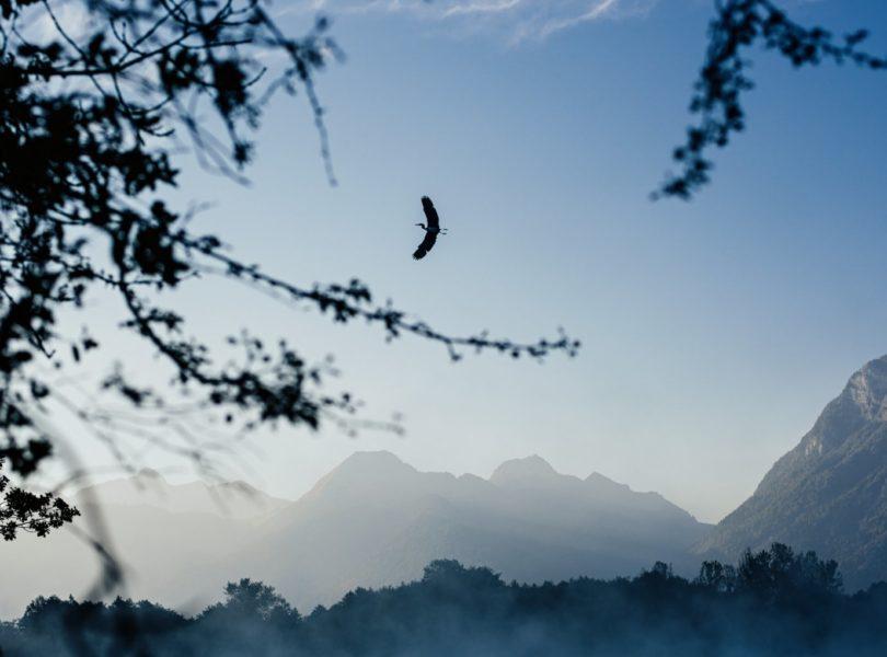 paysage de montagnes en savoie