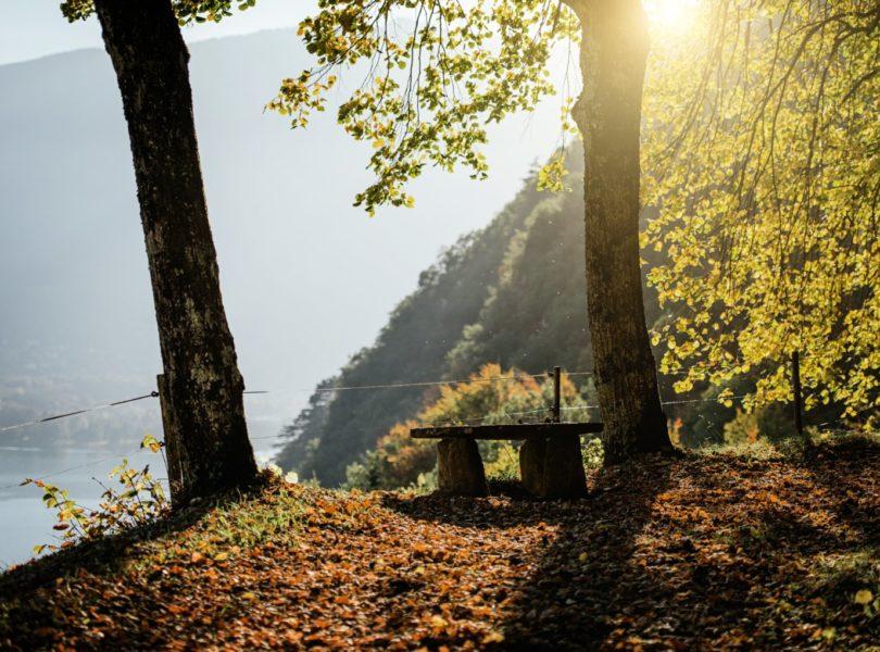 randonnée dans la forêt, vue lac d'Annecy